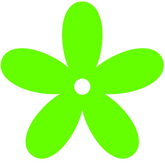 1000+ images about LIME g r e e n.