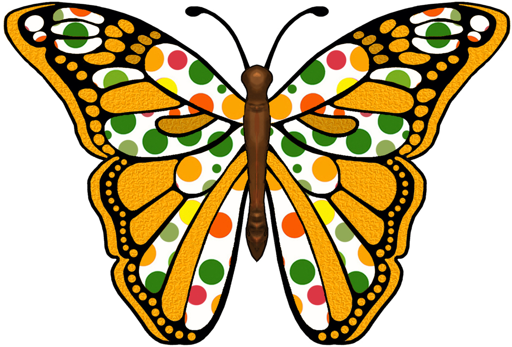 Images Of Butterfly.
