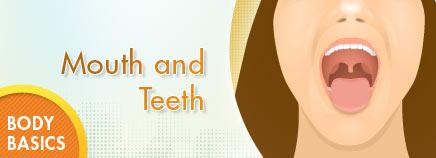 and Teeth.