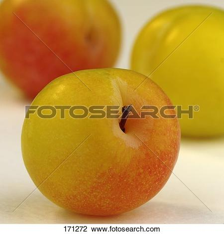 Stock Photo of Yellowish.