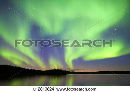 Stock Photo of Aurora borealis (northern lights), boreal forest.