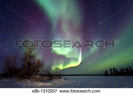 Picture of Aurora Borealis Northern Polar Lights over the boreal.