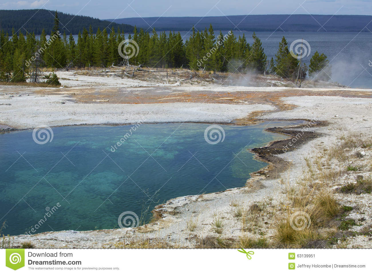 Steaming Hot Springs On Shore Of Yellowstone Lake, Wyoming. Stock.