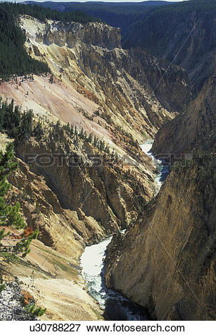 Picture of Wyoming, WY, Yellowstone National Park, Yellowstone.