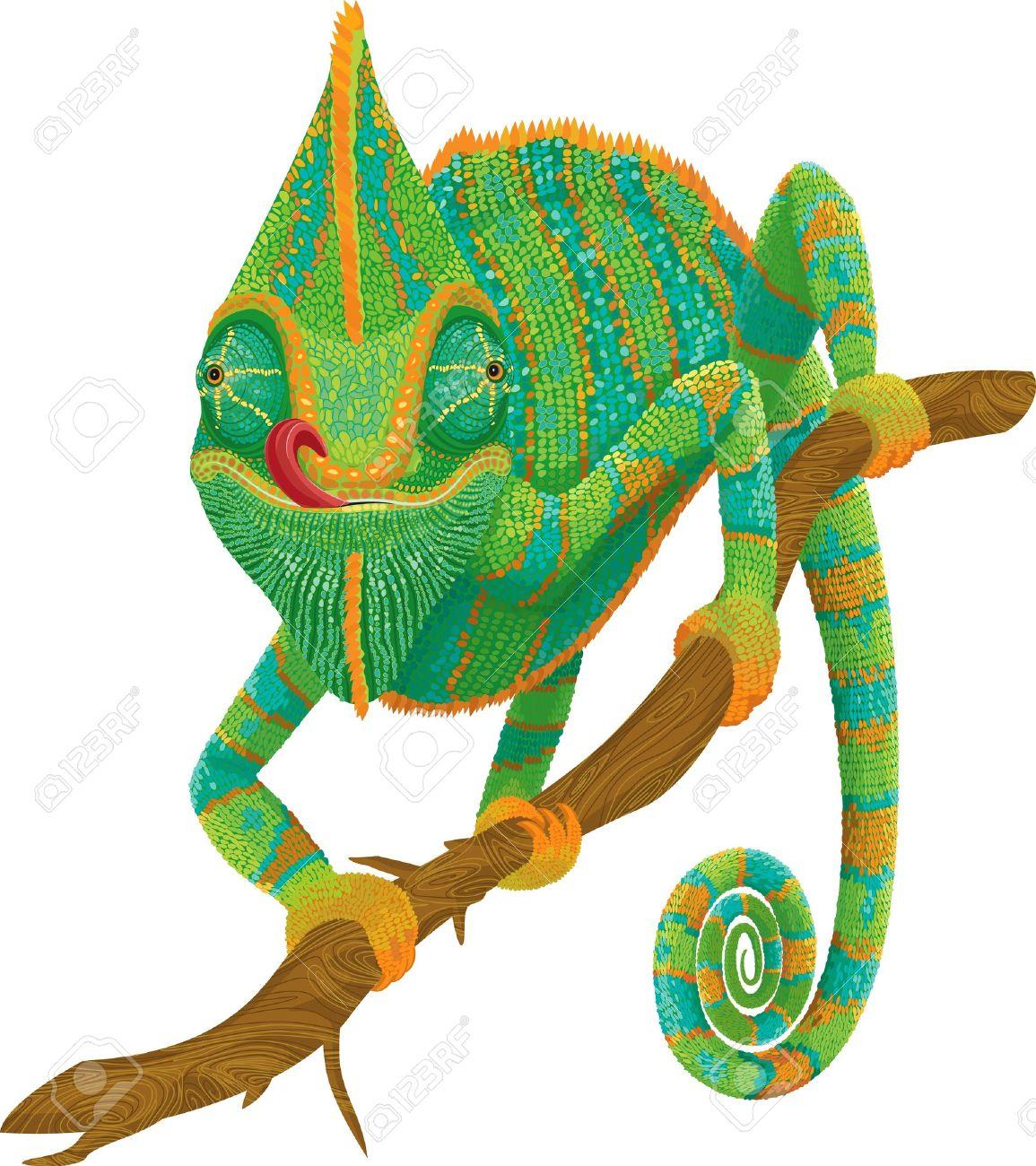 chameleon clipart #28.