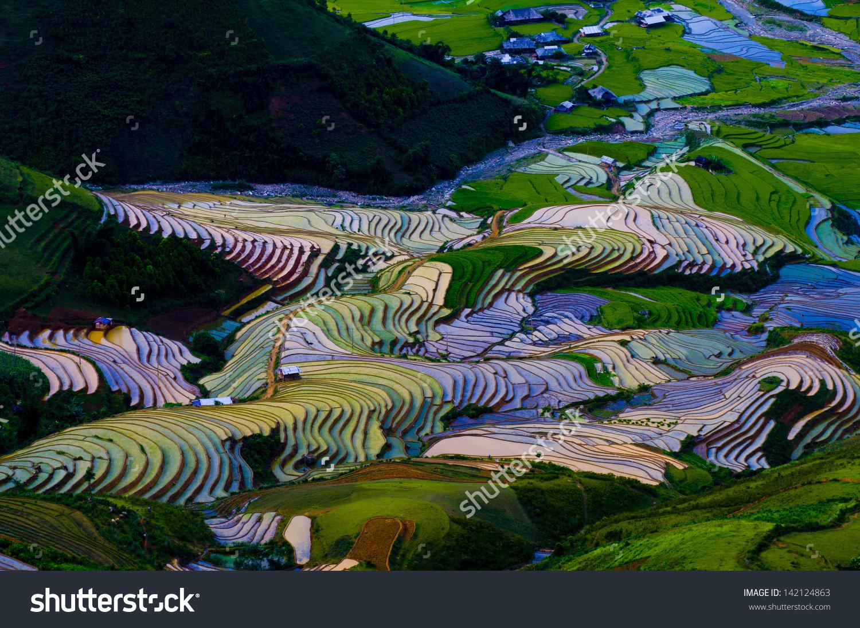 Terraced Rice Field In Water Season In Mu Cang Chai, Yen Bai.