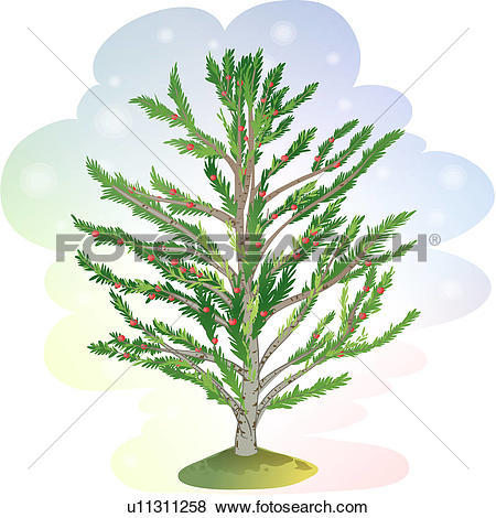 Clip Art of tree, tree, trees, plants, yew tree, icon, plant.