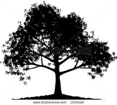 Yew tree clipart.
