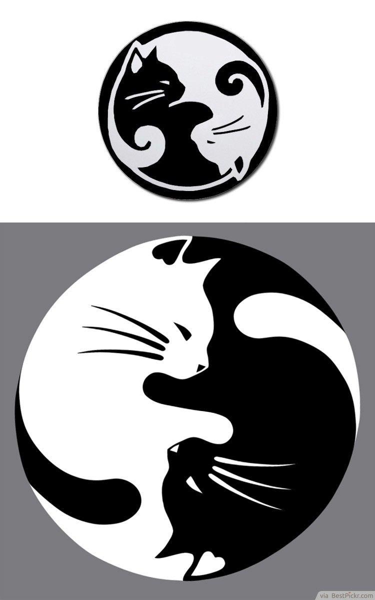 Yin Yang lucky cat tattoo.