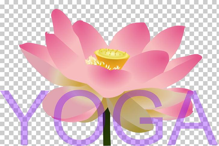 Lotus Cars , Yoga LOTUS PNG clipart.