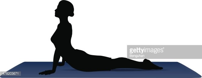 vector illustration of Yoga positions in Cobra Pose Clipart.