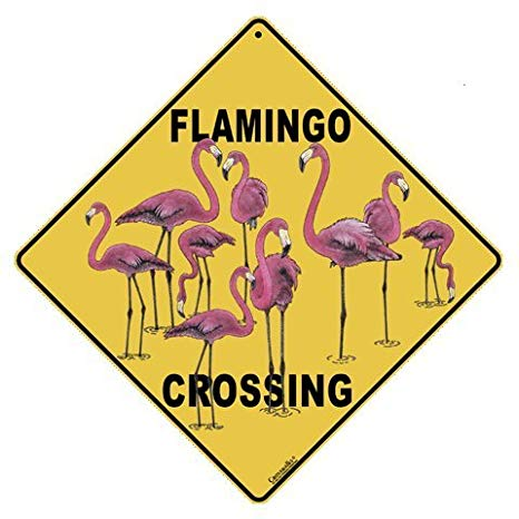 CROSSWALKS Flamingo Crossing 12\