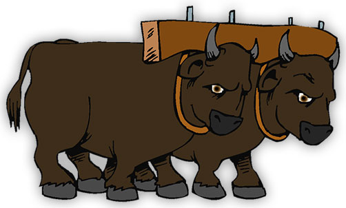 oxen clipart clipground oven clipart birds eye view musk oxen clipart
