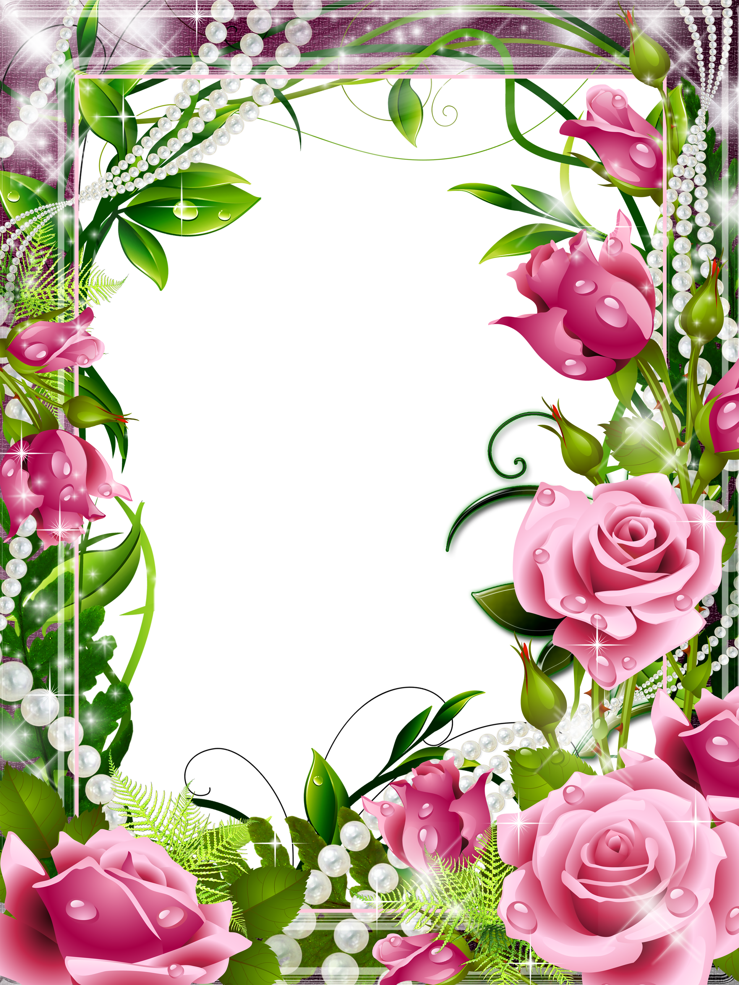 Transparent PNG Photo Frame with Pink Roses.