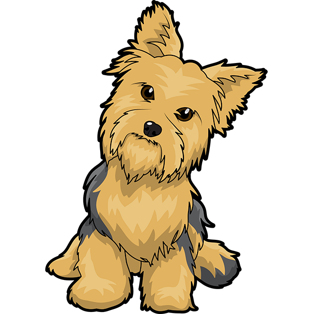 Yorkshire Terrier Puppy Maltese dog English Toy Terrier Clip.