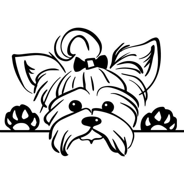 Pin by Lisa Jones on Doggie DIY.