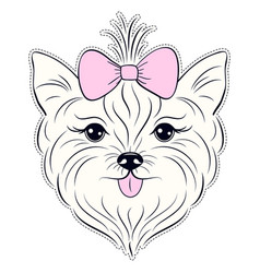 Yorkie Head Vector Images (33).