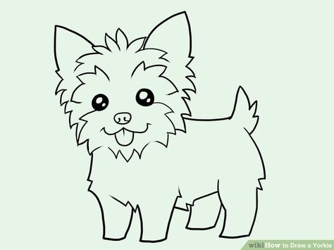 how to draw yorkshire terriers step by step.