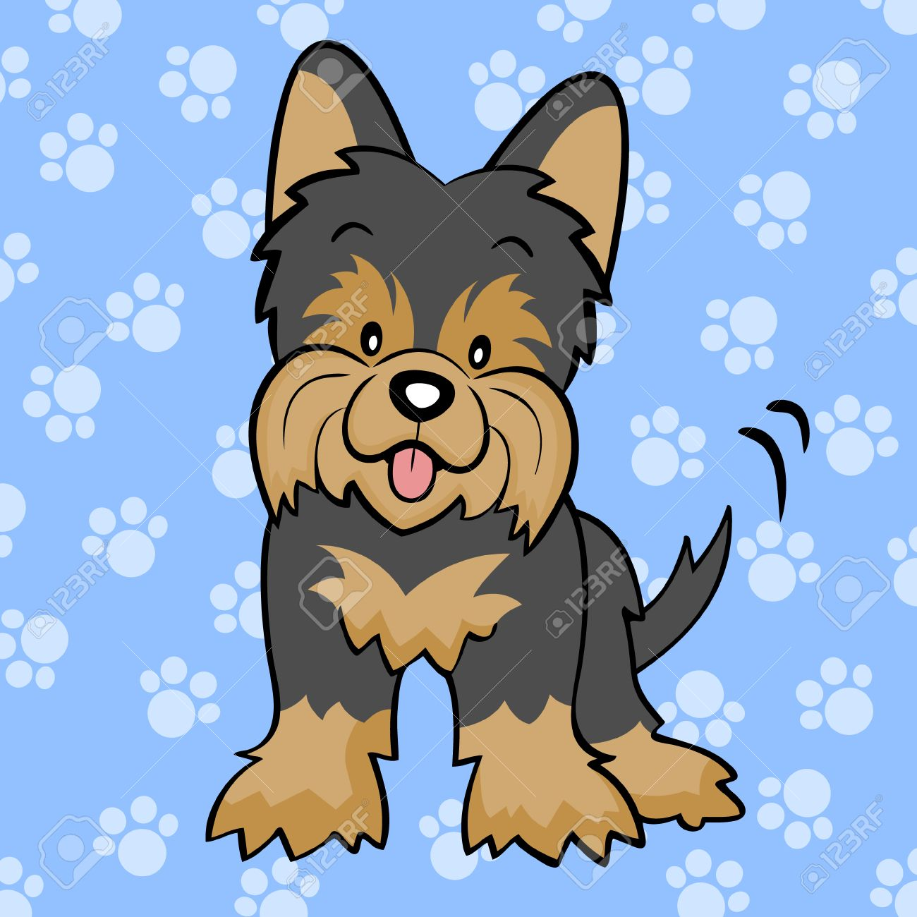 Black Yorkshire terrier puppy.