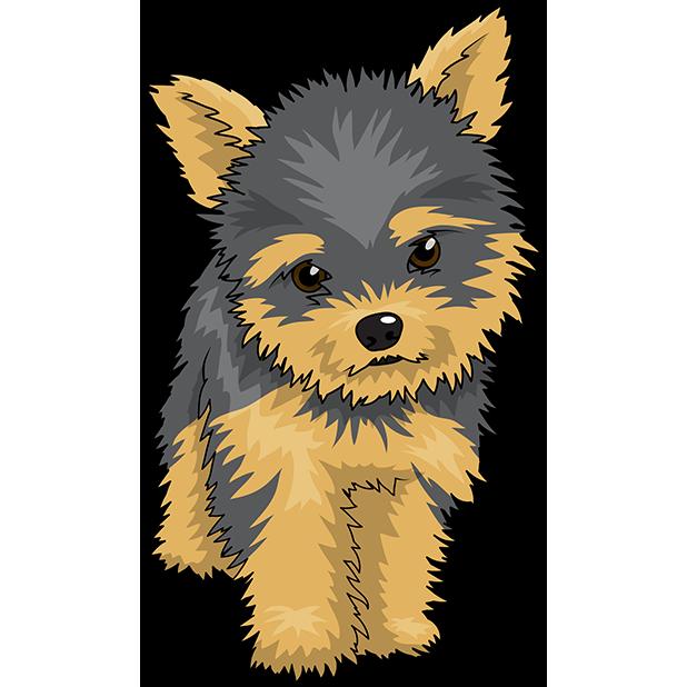 Yorkshire Terrier Cairn Terrier Puppy Clip art.