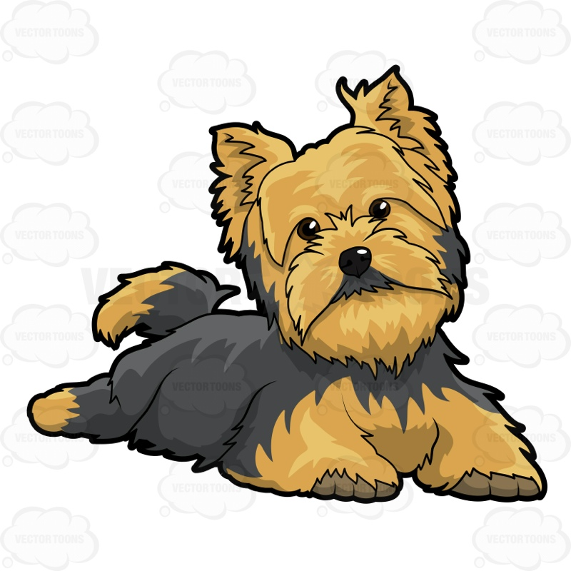Cartoon yorkie clipart.