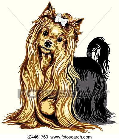 Yorkshire terrier Clipart.