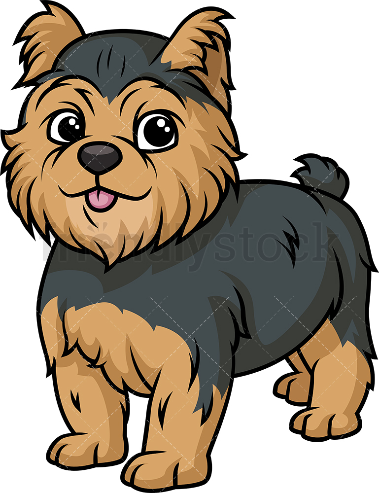 Cute Yorkshire Terrier Puppy.