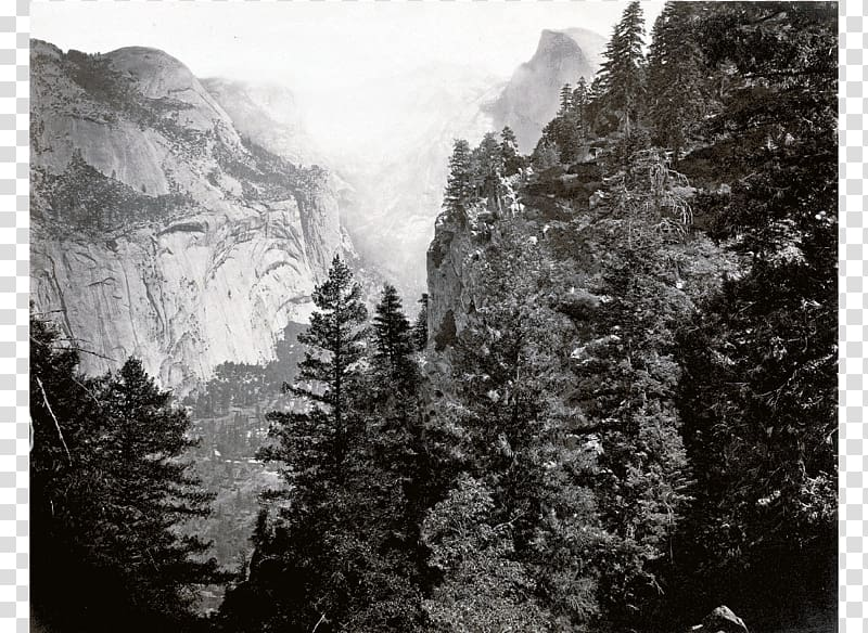 Yosemite Valley Tenaya Lake Tenaya Canyon Half Dome Olmsted.
