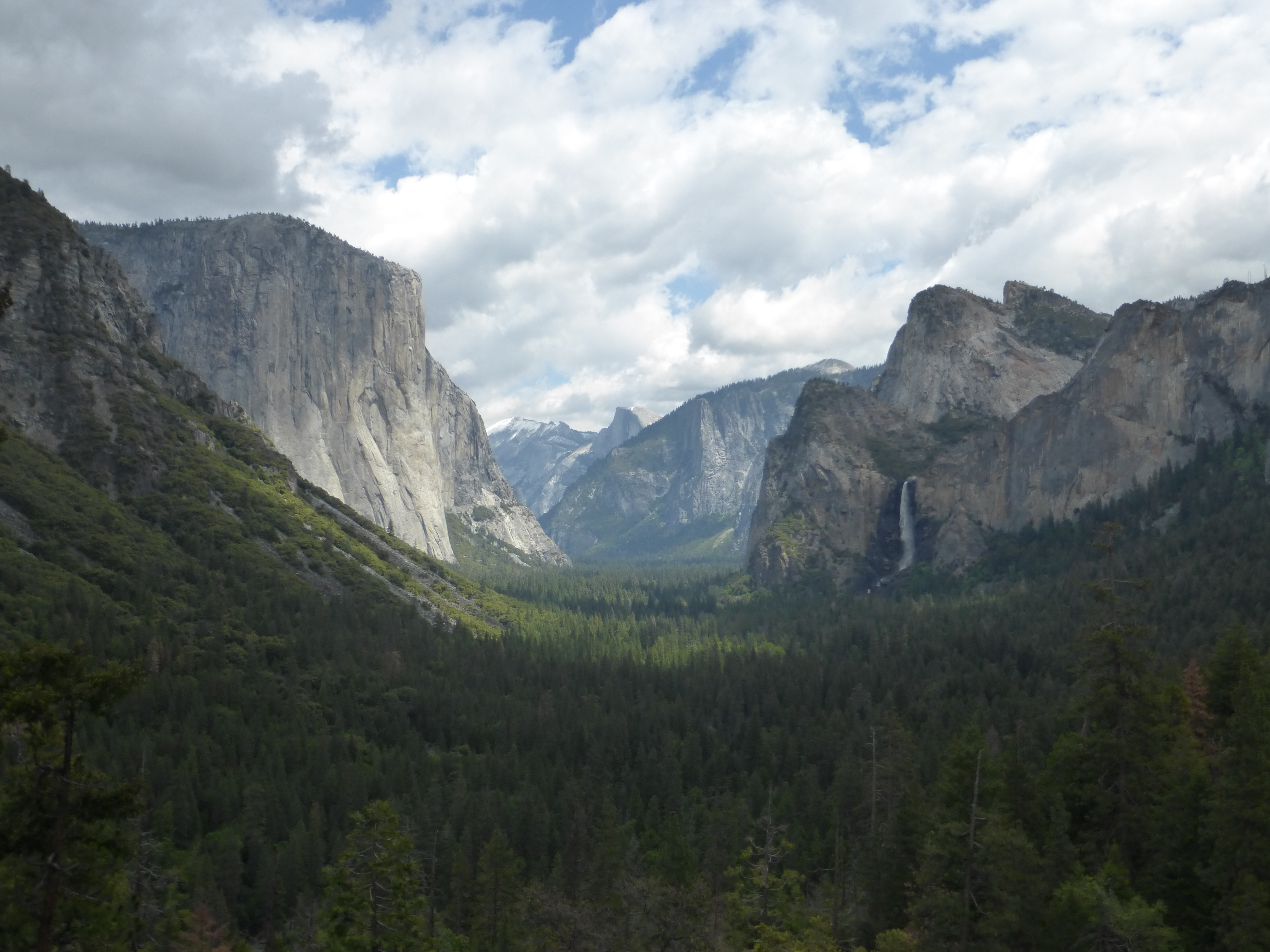 Mysterious disappearances in Yosemite National Park.