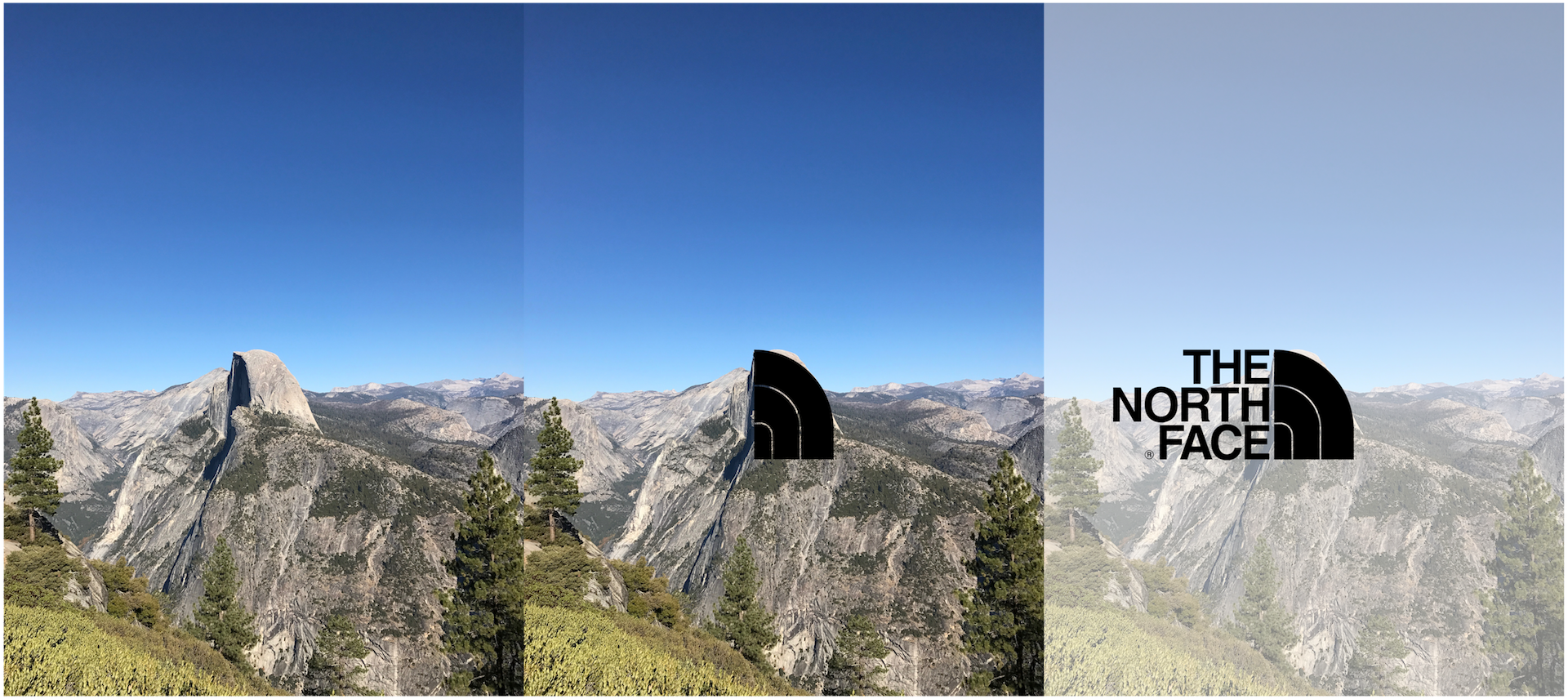 Went to Yosemite National Park this past weekend ….