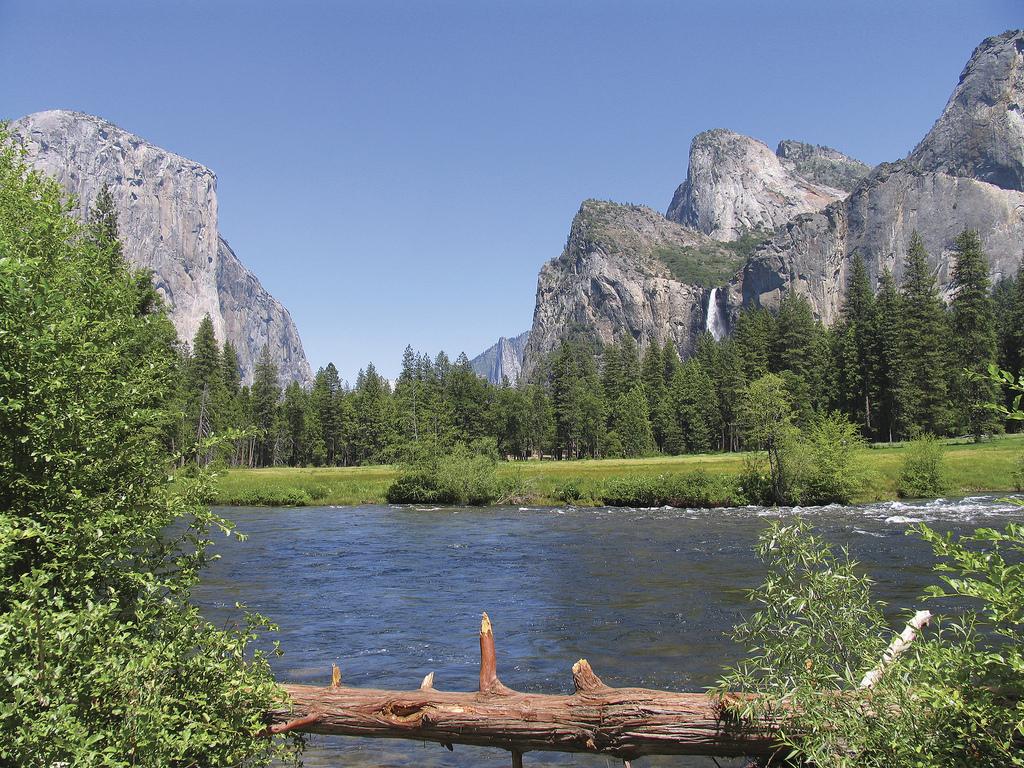 Yosemite Family Vacation & Tour.