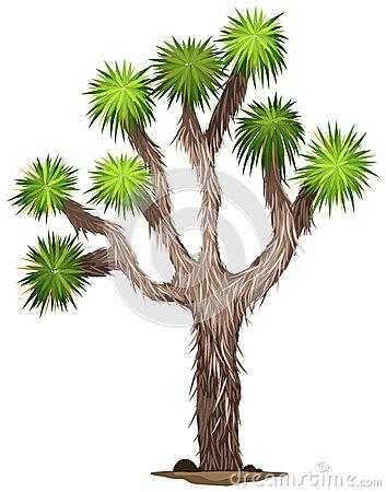 Joshua Tree Clip Art.