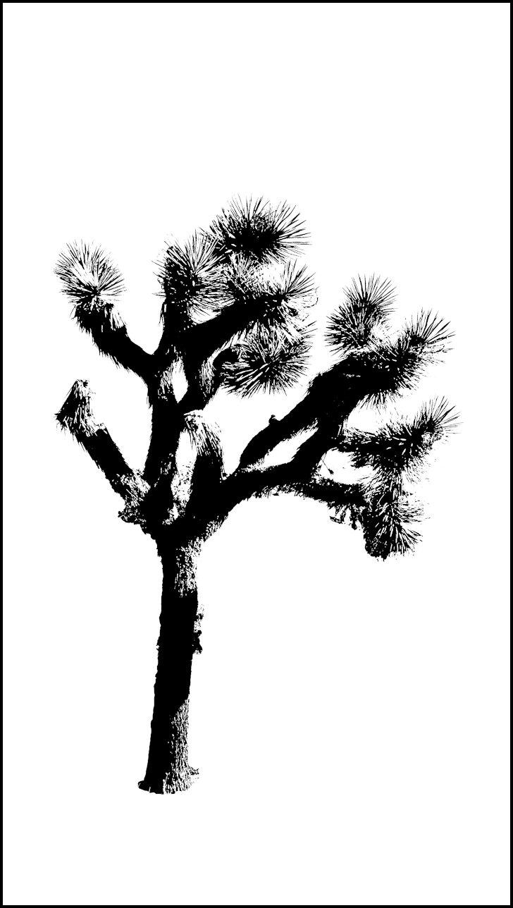 Joshua tree clipart.