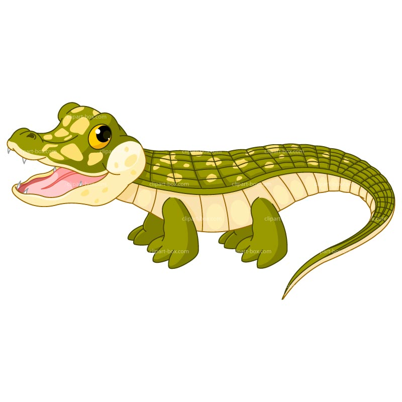 Young crocodile clipart - Clipground