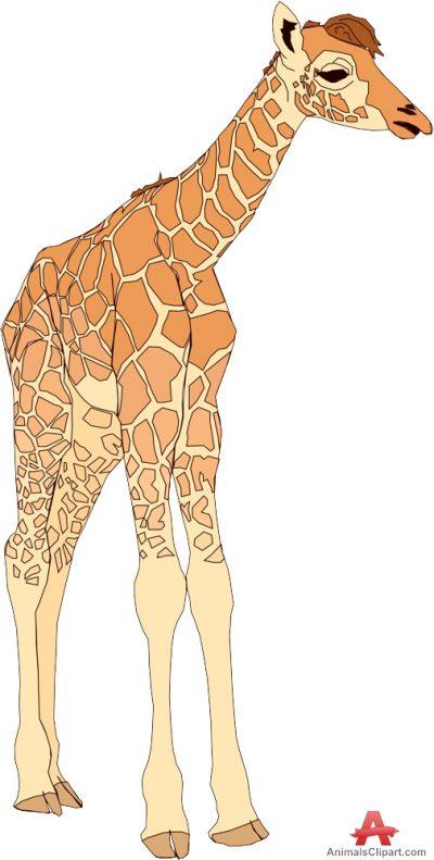 Giraffes Animals Clipart Gallery.