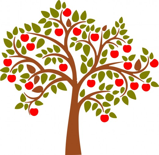 Young apple tree clipart.