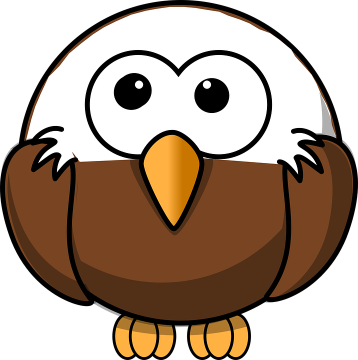 Free vector graphic: Bald Eagle, Young, Bird, Wild.