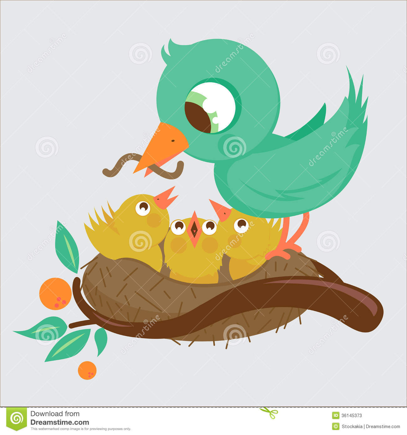 Cute Birds Feeding In The Nest Stock Photos.