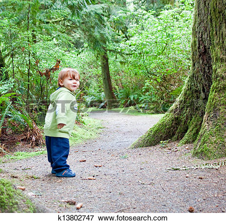 Picture of young child walking alone in forest k13802747.