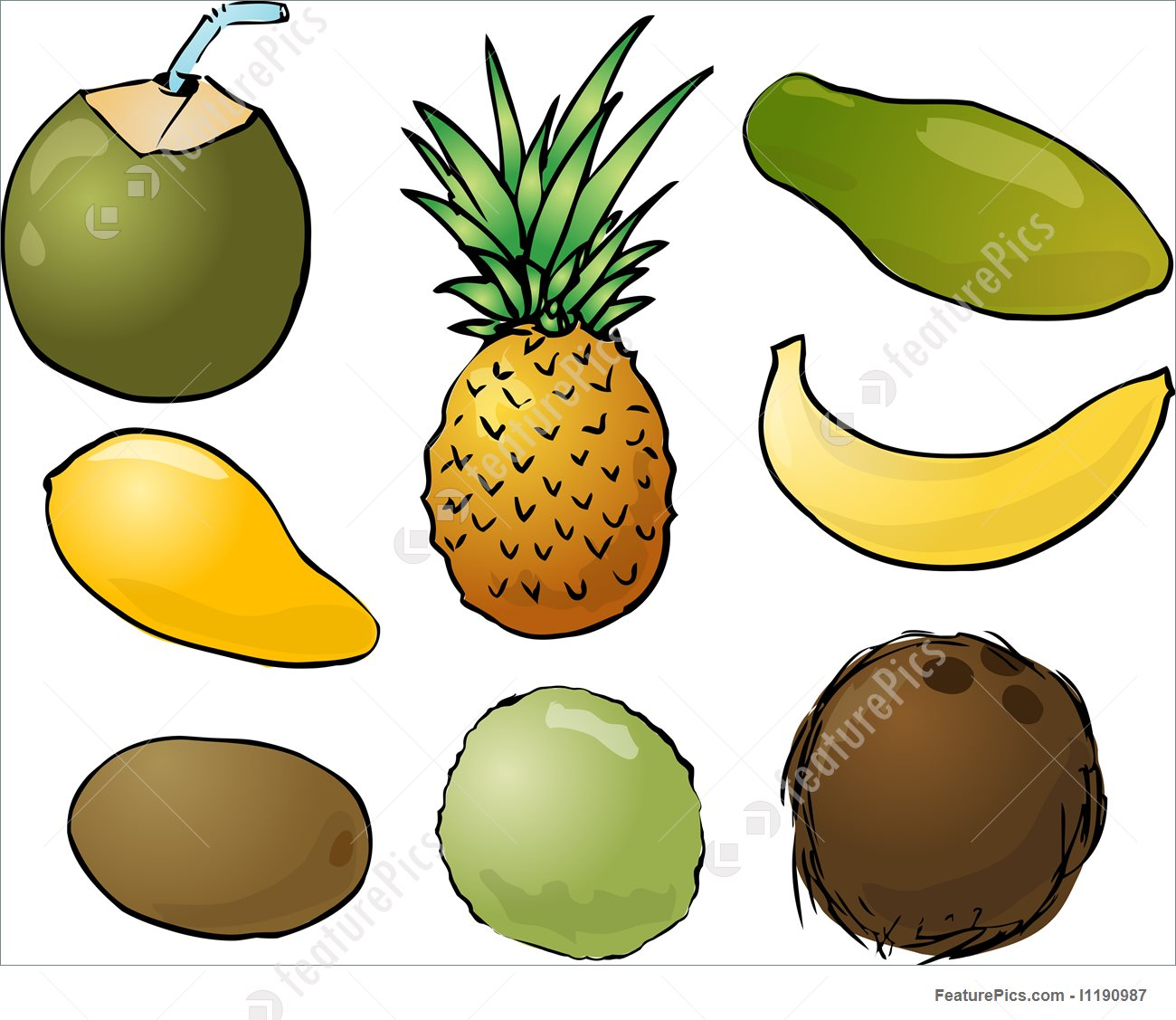 Illustration Of Tropical Fruits.