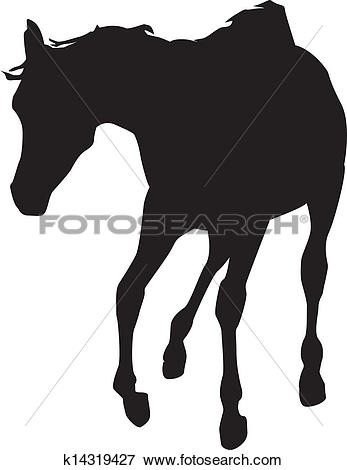 Young horses clipart #10