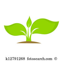 Young plant Clipart Royalty Free. 8,064 young plant clip art.