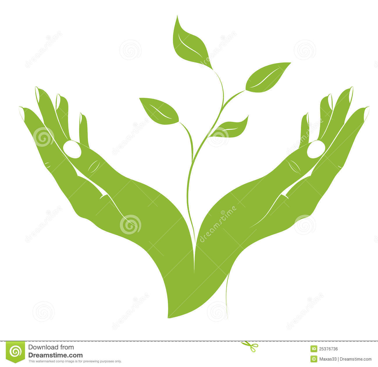 The Silhouette Of Young Plant In Female Hands. Royalty Free Stock.