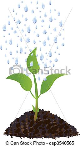 Clipart Vector of Green Young plant with rain drops.