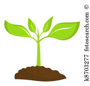 Young plant Clipart Royalty Free. 7,783 young plant clip art.