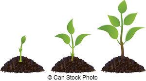 Plant Clip Art & Plant Clip Art Clip Art Images.