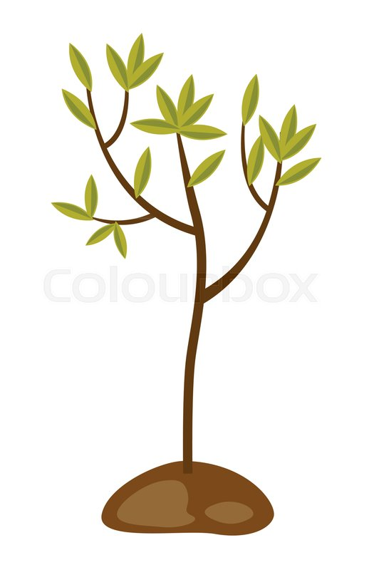 Young tree clipart 3 » Clipart Station.