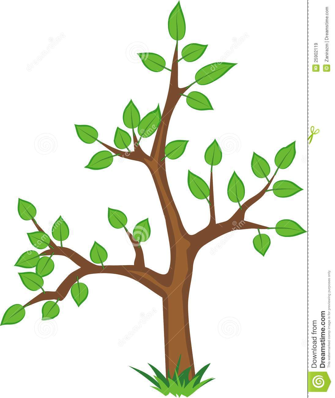 A Young Tree With Green Leaves On A White Backgrou Stock Vector.