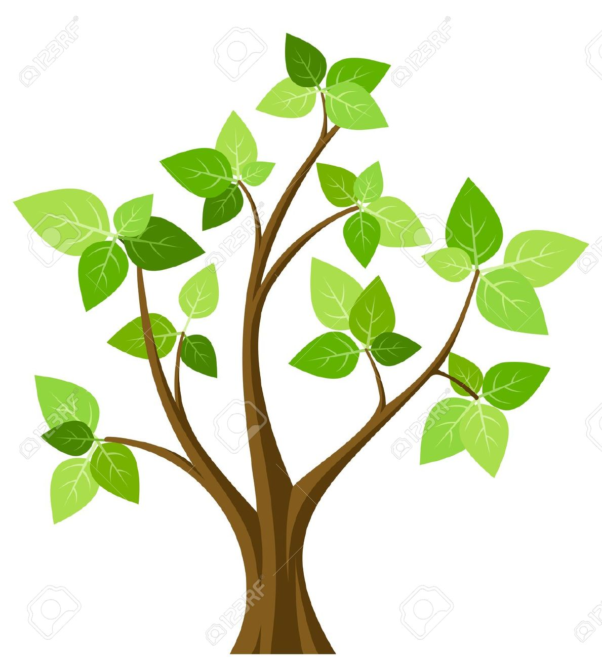Young Tree Clipart.