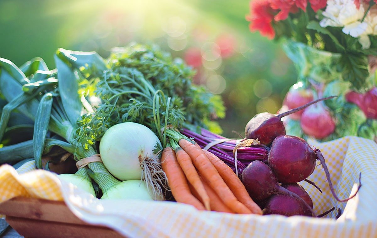Winter Gardening: Best Crops to Extend Your Harvest.